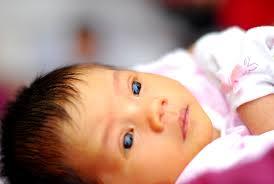 صورة علاج الصفراء عند الاطفال حديثى الولادة