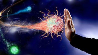 Photo of جهاز المناعة في جسم الانسان – كيفية تقوية جهاز المناعه